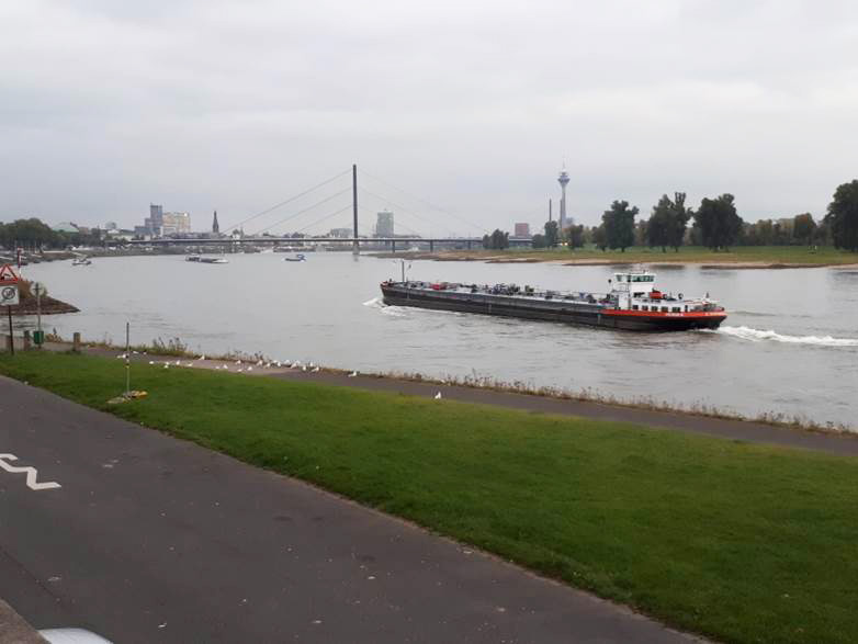 Jokinäkymä Reinille
